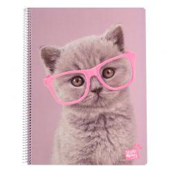 Studio Pets - Notatnik / Notes A4 Kot
